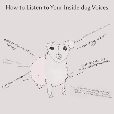 howtolistentoyourinsidedogvoices
